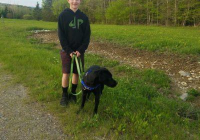 #leashtraining #sanfranciscodogtraining #dogsofbarkbusters